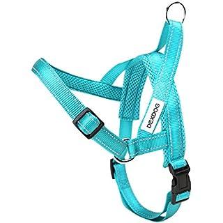 DEXDOG EZHarness, Dog Harness | On/Off Quick | Easy Step In | Walk Vest (Medium, Torquoise)