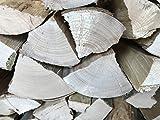 Brennholz Kaminholz Ofenholz Buche handlich, trocken, sofort nutzbar 10 kg