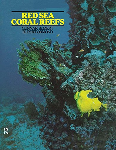 Red Sea Coral Reefs (English Edition) - Coral Edge
