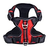 Best Front Range No-pull Dog Harnesses - PUPTECK Best Front Range No-Pull Dog Harness Review