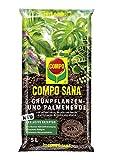 Compo Verdure 1142002004 Sana e Palm Terra, 5L