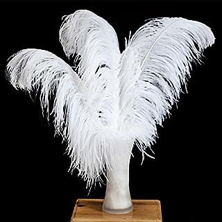 Vejaoo 1plumes naturel autruche plumes 55-60cm grandes décorations pour vacances Party Dress Home d'autruche plumes
