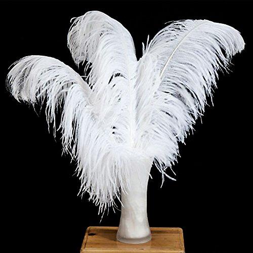 Vejaoo 1 Stücke Federn Natürliche Straußenfedern Länge 55 bis 60cm für Hochzeit Party Weihnachten Dekoration Katzenspielzeug (1pcs white)