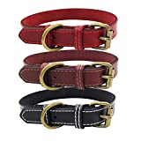 Verstellbare Faux Leder Puppy Dog Buckle Collar Kragen Neck Strap Band Pet Supplies, Front Clip Pet Vest Harness mit Handle Adjustable Padded Harness Easy Control Puppy Harness f¨¹r Outdoor-Training