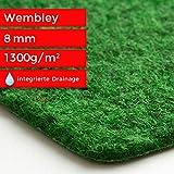 Steffensmeier Kunstrasen Teppich Wembley