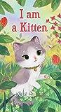 Iams Toys For Kittens - Best Reviews Guide