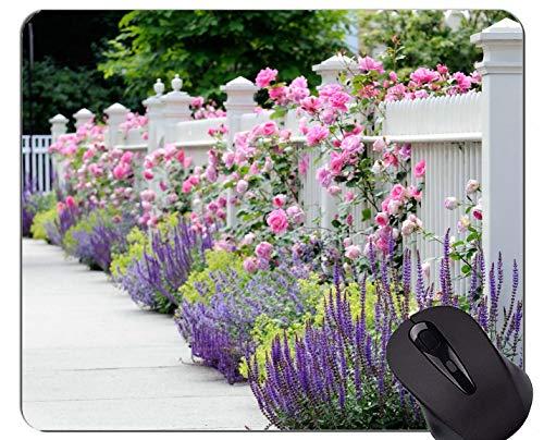 ad mit Zaun Rosenbusch Lavendel-Genähte Kanten gedruckt ()