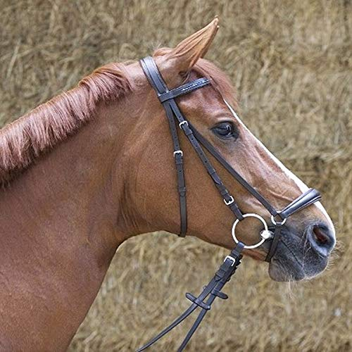 Kieffer Trensenzaum Olivia schwarz hannoversches Reithalfter Stirnband mit Strass mit Zügel gepolstertes Genickstück, Größe Pferd:Warmblut