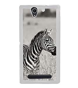 Zebra 2D Hard Polycarbonate Designer Back Case Cover for Sony Xperia C4 Dual :: Sony Xperia C4 Dual E5333 E5343 E5363
