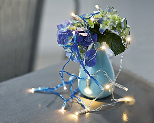 Heidi Lichterkette blau mit 12 LEDs (Radios Mit Sirius Satellite)
