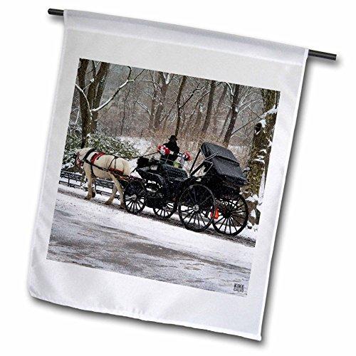3dRose FL_10301_1 Schneeblizzard im Central Park Manhattan New York City, Gartenflagge, 30,5 x 45,7 cm