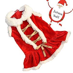 Kiao Costume Avec Bande de Soie d'or en Velours Cosplay Santa Robe de Noel Vetements pour petits ou moyens chien pour Noël-L(XS/S/M/L)