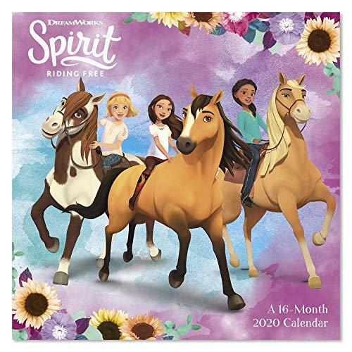 2020 Spirit: Riding Free Wandkalender (DDW3212820) -