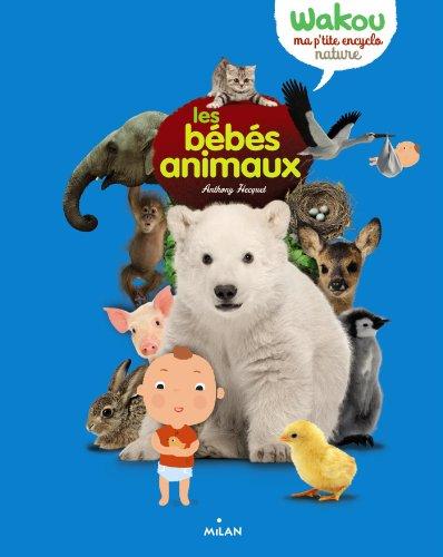 Les bbs animaux