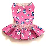 #8: That Dog in Tuxedo Pink Camellia Floral Dog Dress (16)