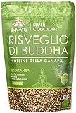 Iswari Risveglio di Buddha Proteine della Canapa - 360 gr