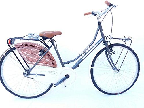 Holland Fahrrad 26Sport 1V. Faema dunkelgrau