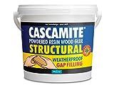 Cascamite - Pegamento de resina para madera (1,5 kg)