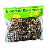 #3: FloraCraft Spanish Moss, 250 cu in (4 Liters) Bag
