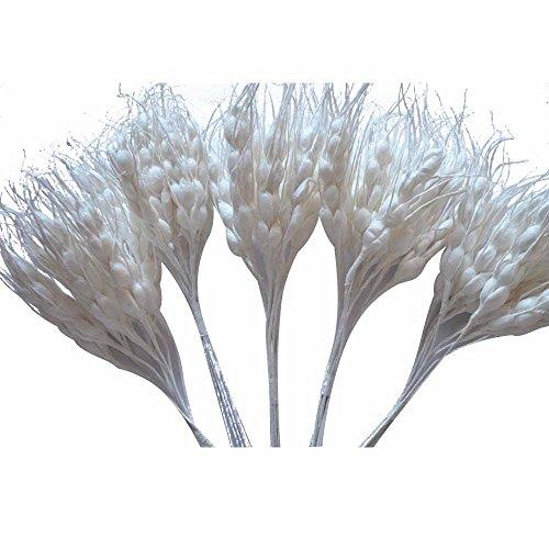 100x spighe in carta vari colori fai da te decorazione bomboniera (bianco)