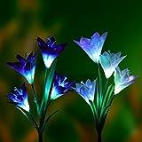 Solar Betriebene Beleuchtung (2er Pack), Denknova Bodenleuchte, Solar Garten Pfahllichter (Leuchte mit Pfahl) mit 8 Lilienblumen, Mehrfarbe, Bunt Wechselde LEDs, Außenleuchte für Garten, Terrasse, Hinterhof (Lila und Weiß)