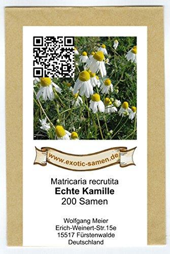 Echte Kamille - Matricaria recrutita (200 Samen)