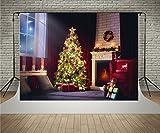 Kate 7x5ft (2.1x1.5m) Fotohintergrund Weihnachten Fenster Vorhang Hintergründen Christmas Eve Fotoshooting hintergrund