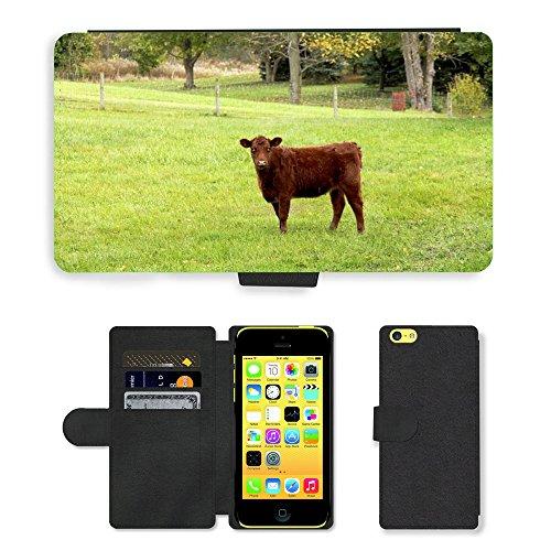 Just Mobile pour Hot Style Téléphone portable étui portefeuille en cuir PU avec fente pour carte//m00138769Mollet Vache Ferme Farm Animal Vache Marron//Apple iPhone 5C