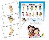 Yo-Yee Flashcards - Schede illustrate per favorire l'apprendimento linguistico - Body Parts - per Le lezioni di Inglese negli e nelle scuole elementari