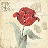 Tulip Gem I by Moulton, Jo - fine Art Print on PAPER : 20 x 20 Inches