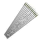 Clispeed Frecce in Carbonio 6pcs Shaft Spine Tiro con L'Arco Caccia Target Practice Frecce Arco ricurvo 6.2mm (Colore Casuale)