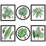 Plantes tropicales salon chambre chevet vert feuilles décoration dessin autocollants , pvc white film material , extra large