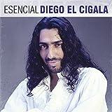 Esencial: Diego El Cigala