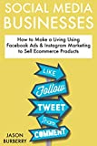 Social Media Businesses: How to Make a Living Using Facebook Ads  & Instagram Marketing to Sell Ecommerce Products