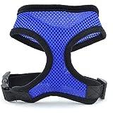 QHGstore Seguridad del animal doméstico del arnés Fácil control de malla chaleco correa del pecho correas del cinturón Azul M