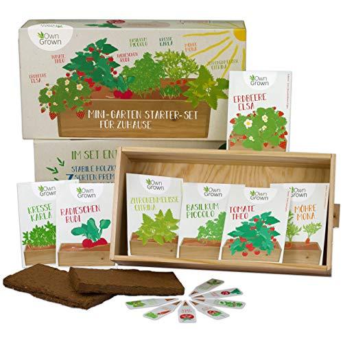 Saatgut Anzuchtset mit 7 Sorten, Mini-Garten Starter Kit von OwnGrown, Gemüse und Kräuter Samen Anzucht Set für die Fensterbank als Geschenk für Kinder und Familie (Kräuter-garten)