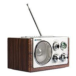 Blaupunkt Retro Radio RXN 19, Design-Radio mit USB 2.0 und UKW/ FM, Nostalgieradio mit Aux-In für die Musikwiedergabe vom Smartphone, Kofferradio mit Holzgehäuse in braun/ silber