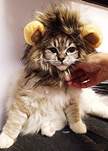Dogloveit Haustierkostüm, Modell Löwenmähne mit Ohren, für (Hund Kostüme Schwanz)