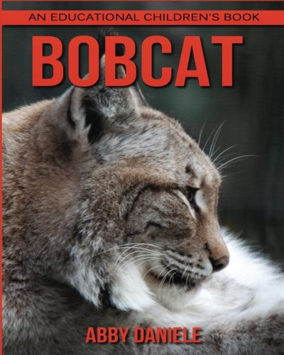 bobcat-an-educational-childrens-book-about-bobcats-with-fun-facts-photos