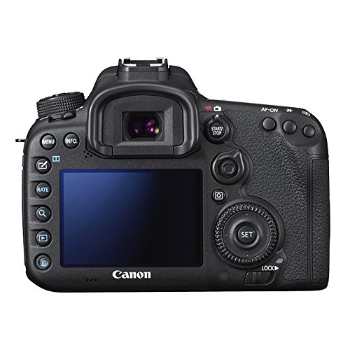 CANON EOS 7D MARK II + SIGMA 18-200 CONTEMPORARY