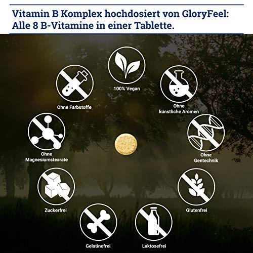Vitamin B Komplex Hochdosiert 200 Tabletten – Alle 8 B-Vitamine in einer Tablette Ohne Magnesiumstearate – B1 B2 B3 B5 B6 B7 (Biotin) B9 (Folsäure) und B12 – Über 6 Monte Vitamin-B von GloryFeel - 5