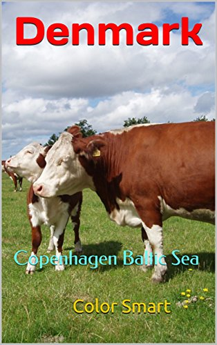 Denmark: Copenhagen Baltic Sea (Scandivavia Book 3)