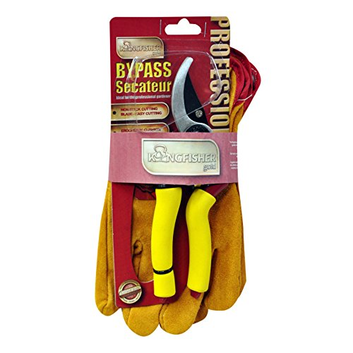 Kingfisher Pro Gold Gartenschere und Handschuhe Geschenk Set + Inspirierende Magnet (Speichert Trolley)