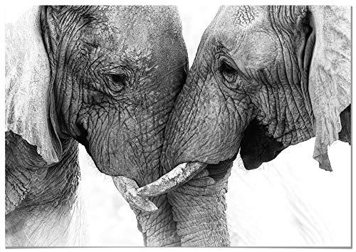 Panorama® Lienzo Pareja Elefantes 50x35cm | Impreso en Lienzo Bastidor | Cuadros...