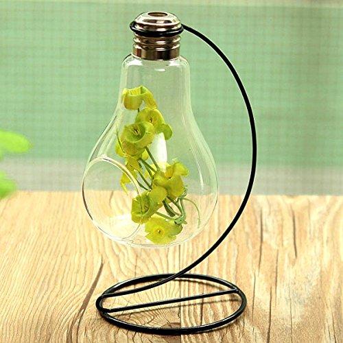 Bluelover Birne Form Vase Mikro Landschaft Eco Glasflasche Mit Halter