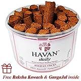 HAVAN Daily – 100% Ayurvedic Havan Dhoop Sticks   Now perform instant Yagya everyday (Monthly pack of 30 Sticks)   Purely Handmade   Natural Havan Aroma - 125g