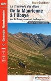 De la Maurienne à l'Ubaye : Traversée des Alpes par le Briançonnais et le Queyras