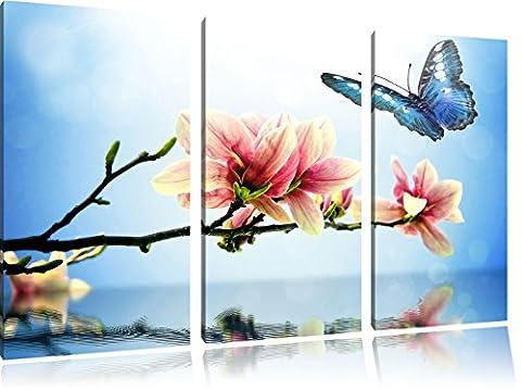 Papillon bleu avec Magnolia Blossom 3 pièces image image toile 120x80 sur toile, XXL énormes Photos complètement encadrées avec civière, impression d'art sur châssis murale gänstiger comme la peinture ou une peinture à l'huile, pas une affiche ou une