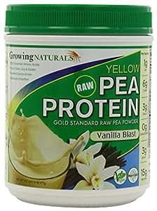 Raw Yellow Pea Protein Isolate Vanilla - 475g