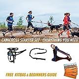 Canicross Starter Kit–todo lo necesario para empezar a correr con su perro–perro arnés, cintura, Bungee línea,–Mochila para niños, guía de comienzo, Red, White & Blue